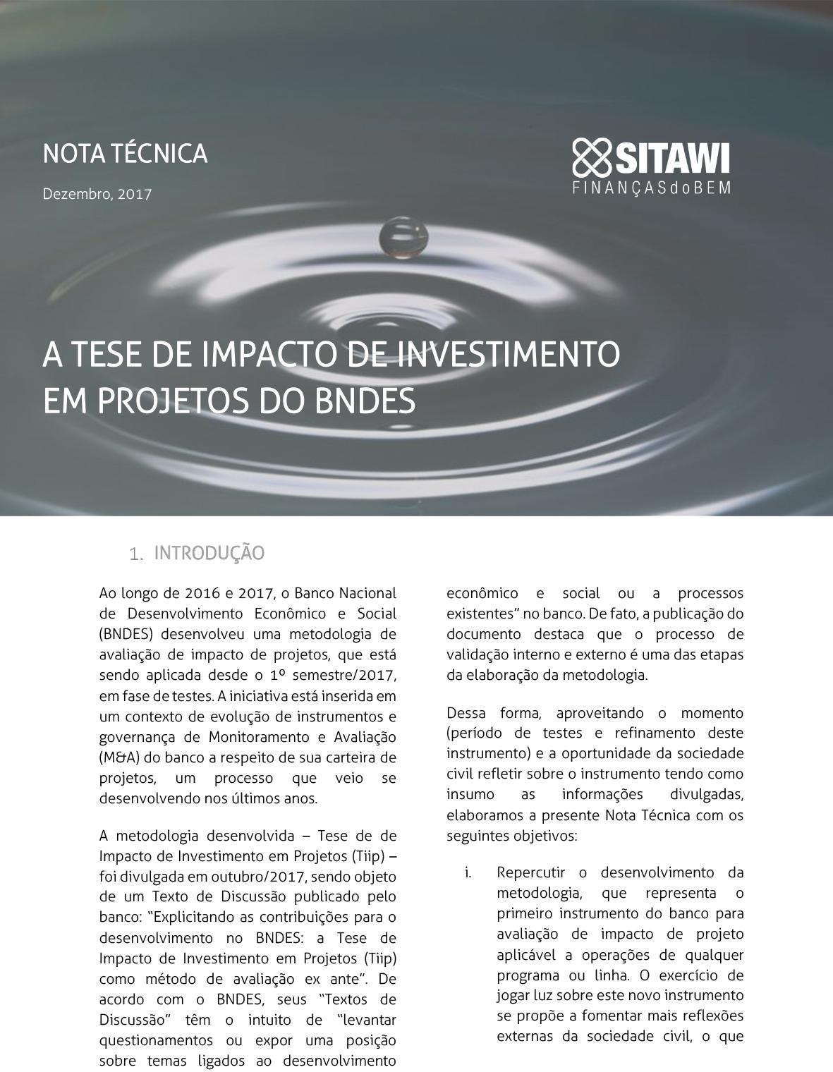 A TESE DE IMPACTO DE INVESTIMENTO EM PROJETOS DO BNDES